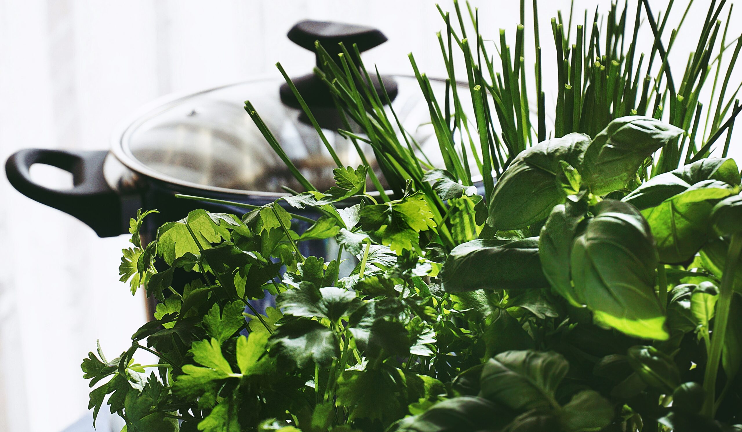 Cooking pot alongside herbs and greens