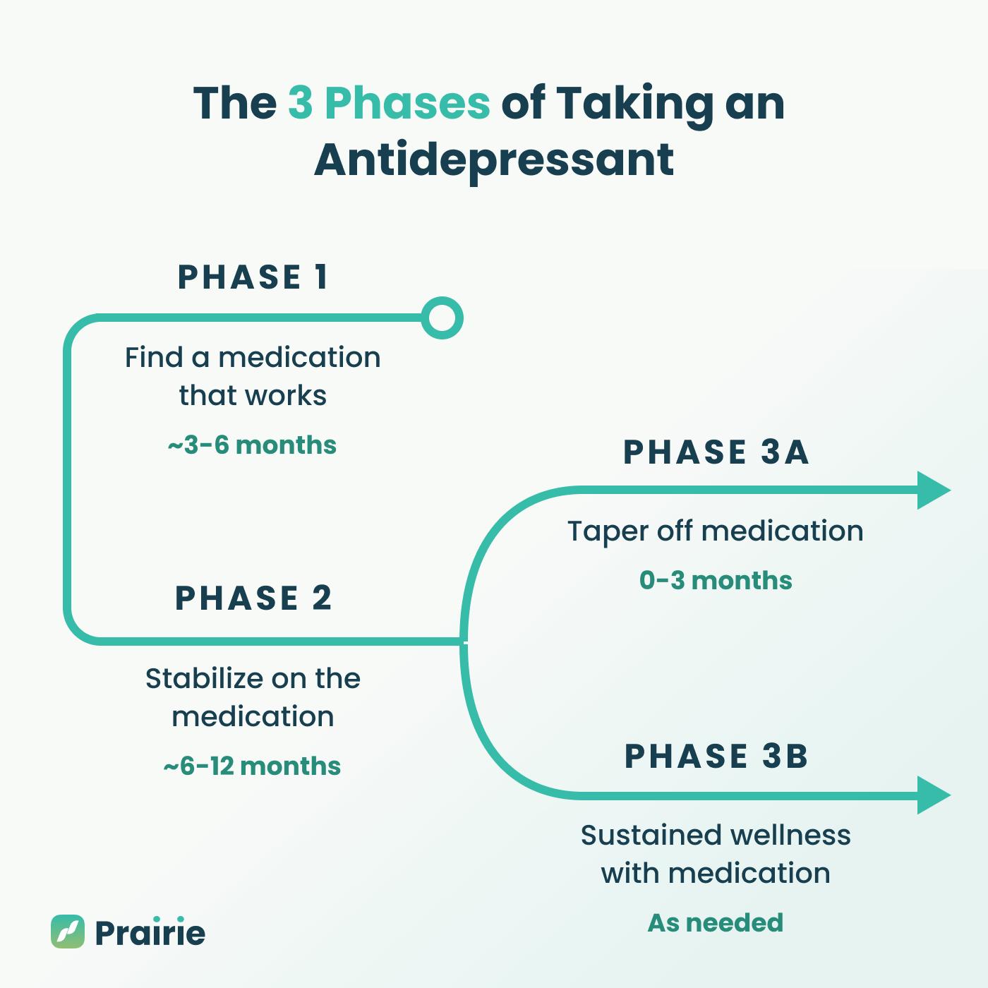 Antidepressant Life Cycle – Blog